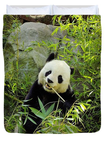 Posing Panda Duvet Cover by John  Greaves