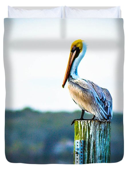 Duvet Cover featuring the photograph Posing Pelican by Shannon Harrington