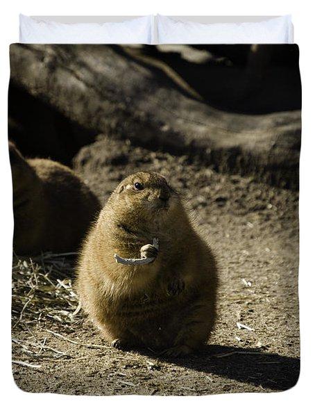Prairie Dog Sees The Shadow Duvet Cover