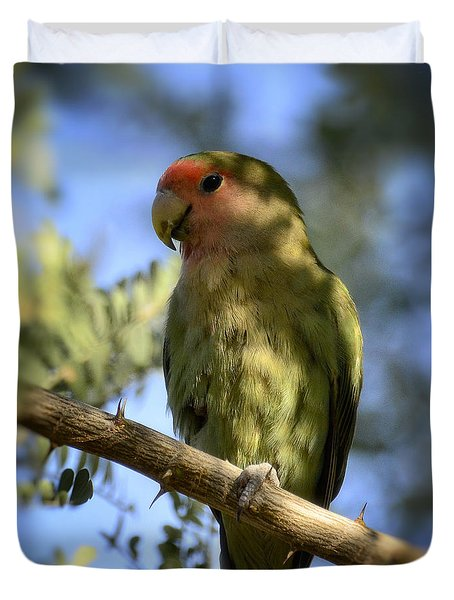 Pretty Bird Duvet Cover by Saija  Lehtonen