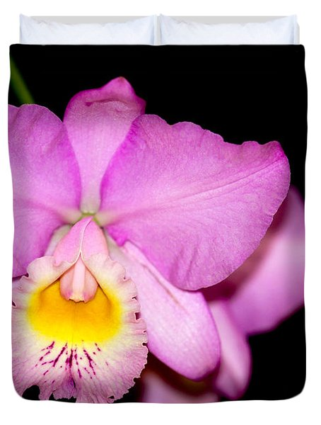 Pretty In Pink Orchid Duvet Cover by Sabrina L Ryan
