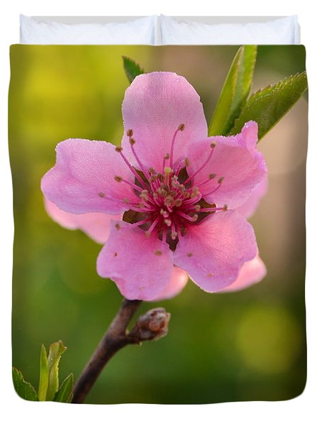Pretty Pink Peach Duvet Cover by JD Grimes