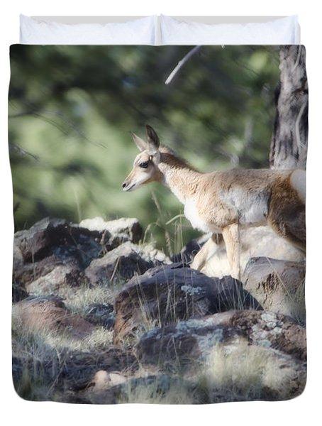 Pronghorn Antelope Fawn Duvet Cover