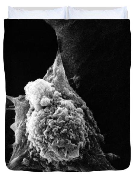 Pseudopodia Sem Duvet Cover by Science Source