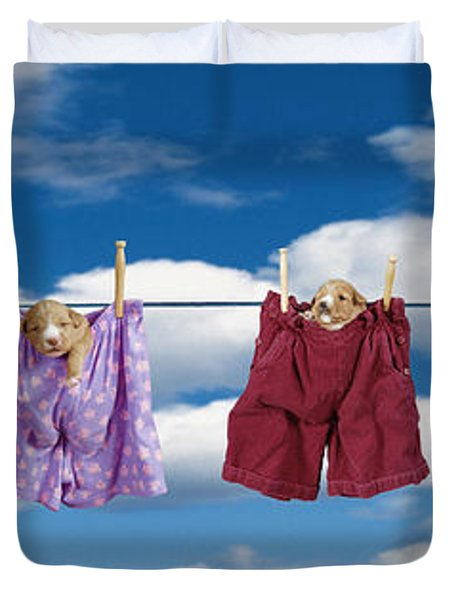 Puppies Hanging Out Duvet Cover by Darwin Wiggett