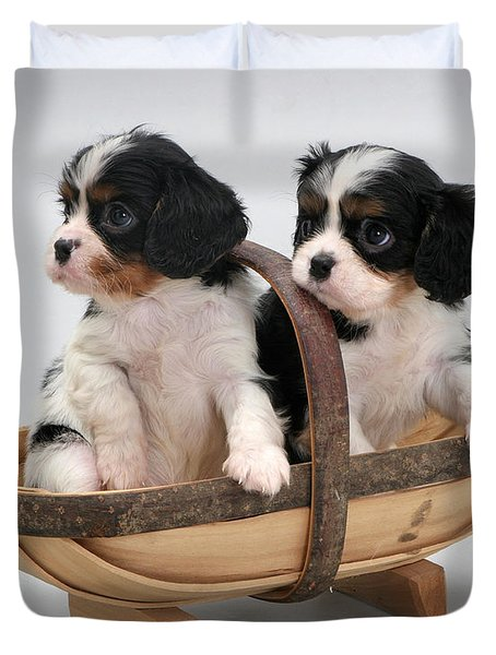 Puppies In A Trug Duvet Cover by Jane Burton