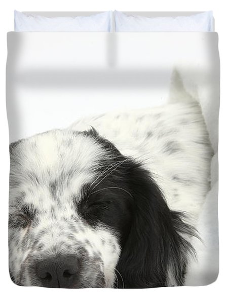 Puppy Sleeping In Christmas Hat Duvet Cover by Mark Taylor