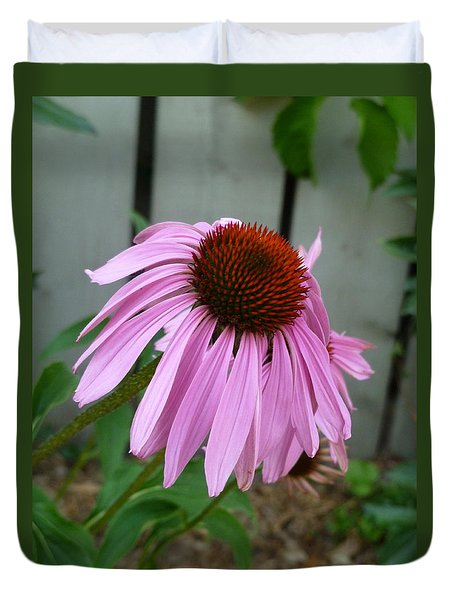 Purple Echinacea Duvet Cover by Lingfai Leung