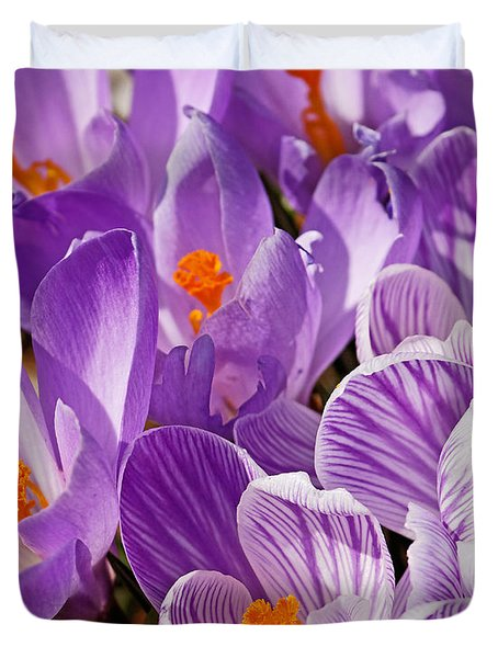 Purple Oh Purple Duvet Cover