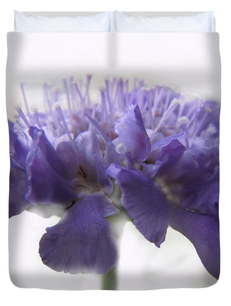 Duvet Cover featuring the photograph Purple Pincushin by Debbie Portwood