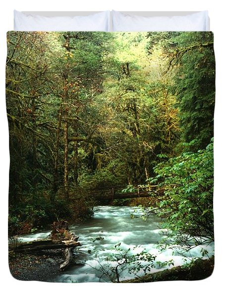 Quineault Rain Forest Duvet Cover by Rick Frost