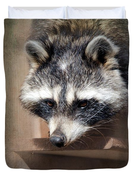 Raccoon 3 Duvet Cover by Betty LaRue