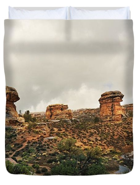 Rain At The Needles District Duvet Cover by Marty Koch