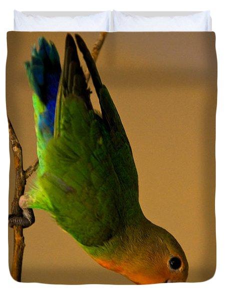 Rainbow Bird Duvet Cover by Syed Aqueel