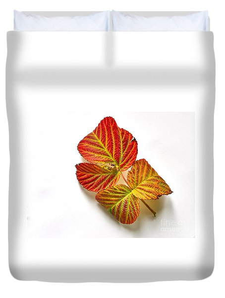 Raspberry Leaves In Autumn Duvet Cover by Sean Griffin