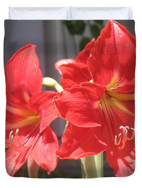 Duvet Cover featuring the photograph Red Amaryllis by Kume Bryant