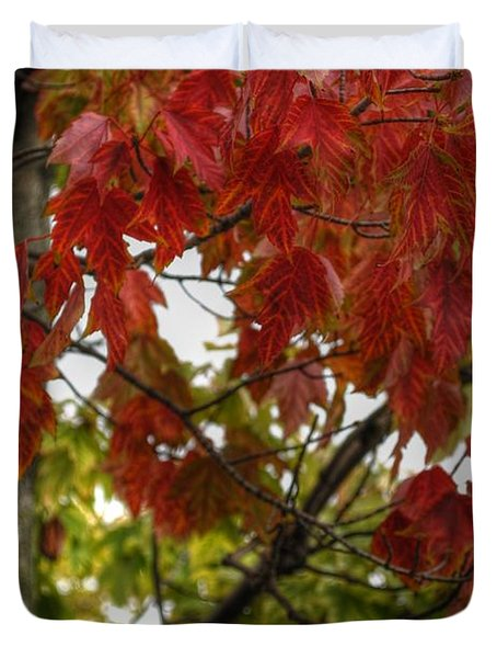 Duvet Cover featuring the photograph Red And Green Prior X-mas by Michael Frank Jr