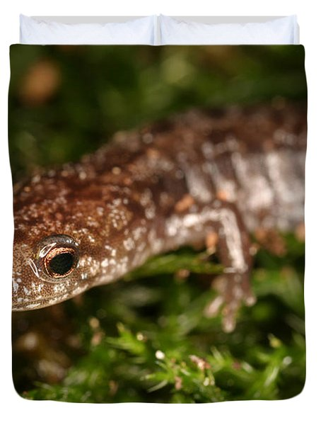 Red-backed Salamander Duvet Cover by Ted Kinsman