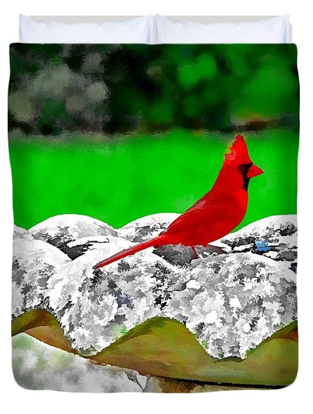 Red Bird In Bath Duvet Cover