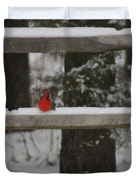 Duvet Cover featuring the photograph Red Bird by Stacy C Bottoms