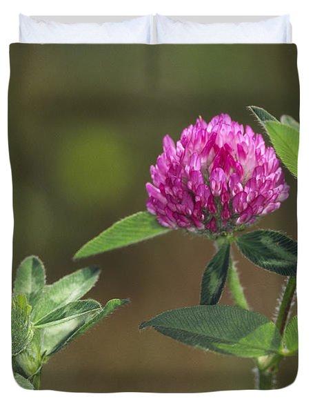 Red Clover Blossom Duvet Cover