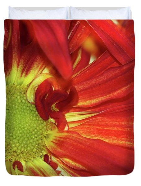 Red Daisy Too Duvet Cover by Sabrina L Ryan