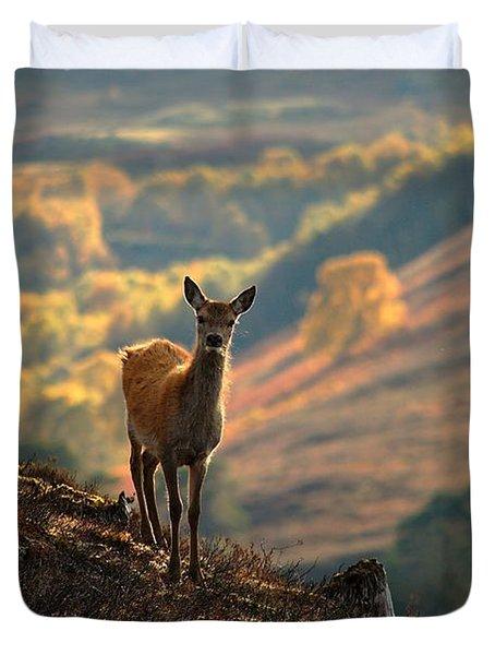 Red Deer Calf Duvet Cover