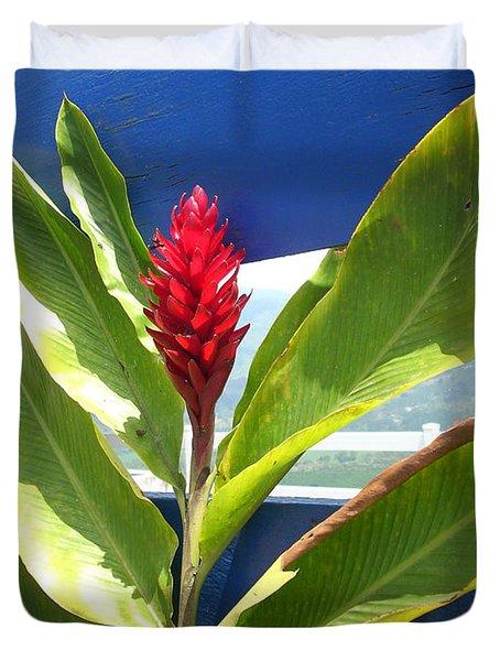 Red Ginger Duvet Cover by Randi Shenkman