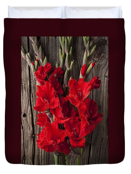 Red Gladiolus Duvet Cover by Garry Gay