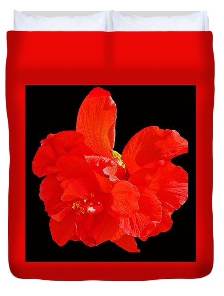 Red Hibiscus Duvet Cover by Cindy Manero