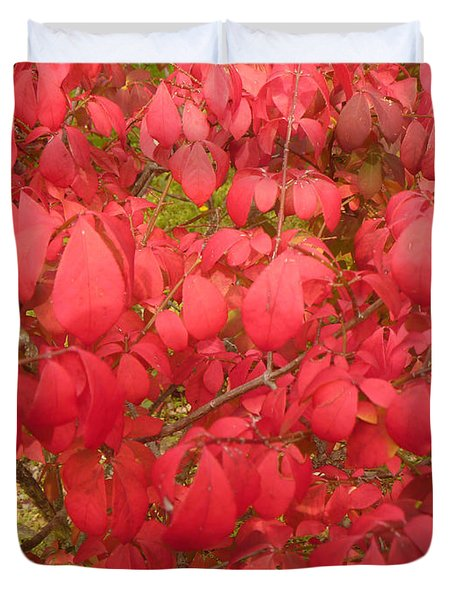 Red Leaves Iv Duvet Cover by Alys Caviness-Gober