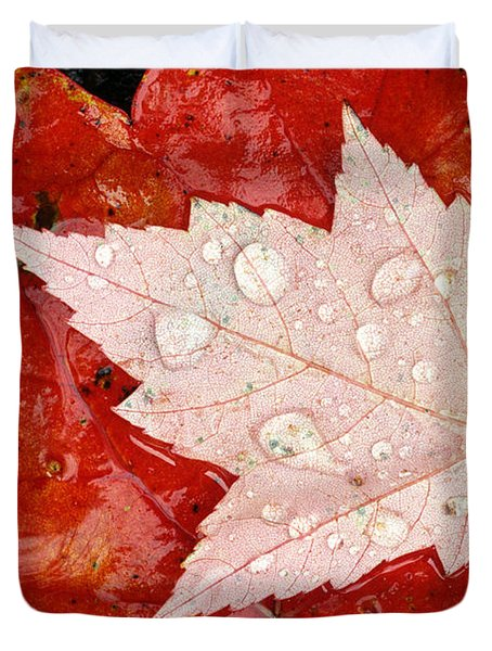 Red Maple Leaves Duvet Cover by Mike Grandmailson