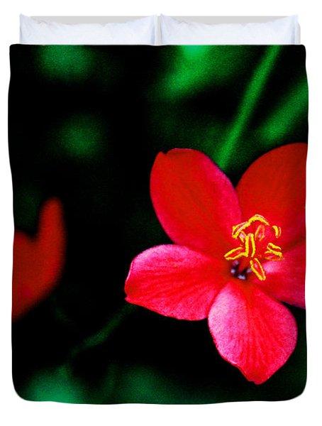 Red Petaled Dream Duvet Cover