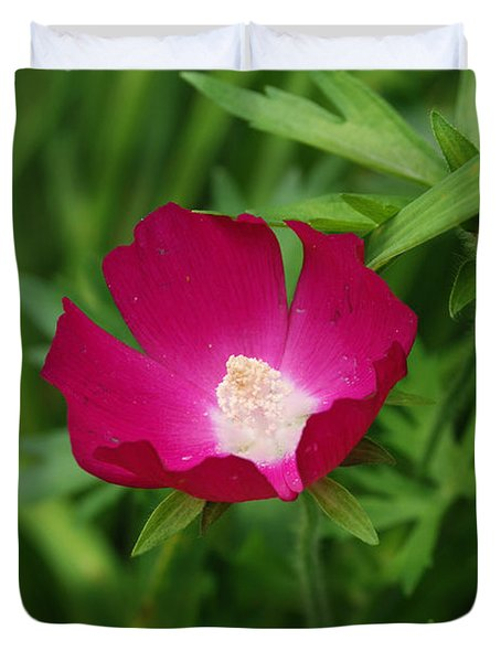 Duvet Cover featuring the photograph Red Poppy Flower by Eva Kaufman