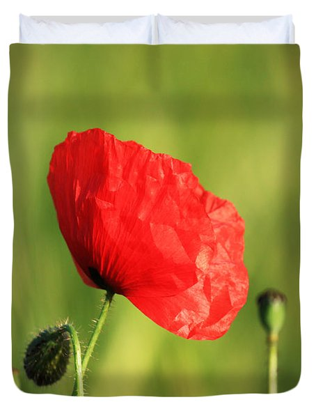 Red Poppy In Field Duvet Cover by Pixel Chimp