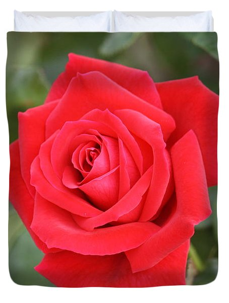 Duvet Cover featuring the photograph Red Rose by Donna  Smith
