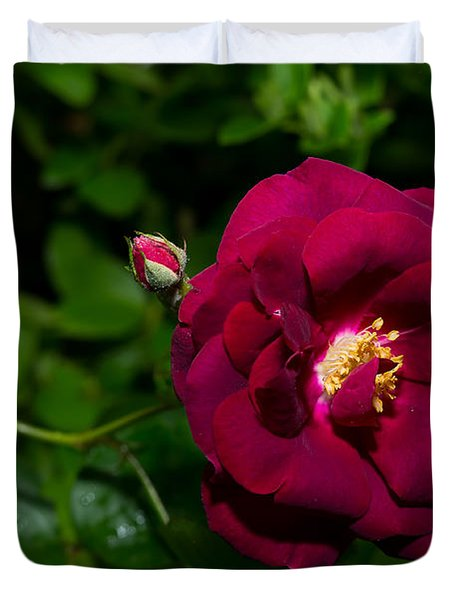 Red Rose In The Wild Duvet Cover