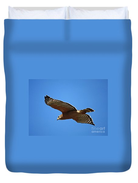 Red Shouldered Hawk In Flight Duvet Cover by Carol Groenen