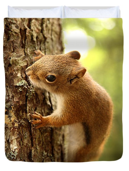 Red Squirrel Duvet Cover by Ted Kinsman