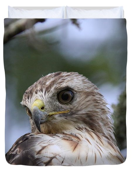 Red-tailed Hawk Has Superior Vision Duvet Cover by Travis Truelove