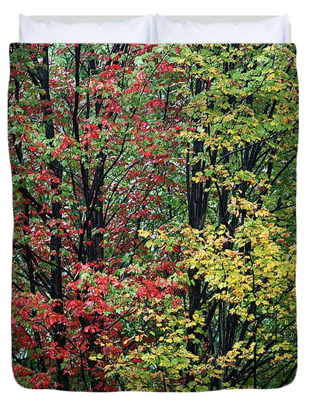 Red Yellow And Green Leaves Duvet Cover