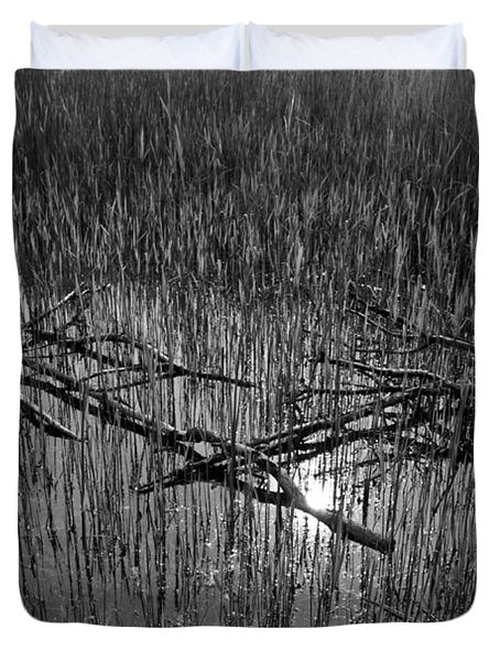 Reeds And Tree Branches Duvet Cover by David Pyatt