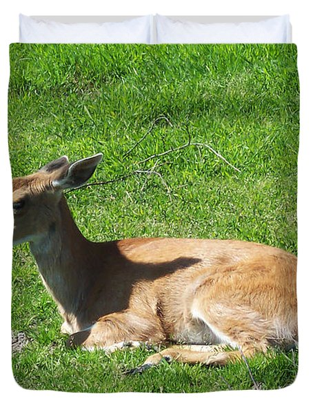 Relaxin Duvet Cover by Aimee L Maher Photography and Art Visit ALMGallerydotcom