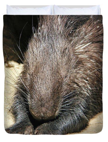 Resting Porcupine Duvet Cover by Mariola Bitner