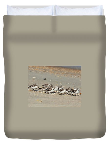 Resting Sandpipers Duvet Cover