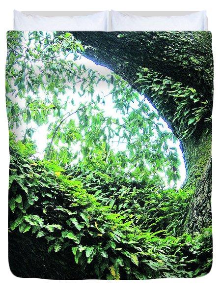 Duvet Cover featuring the photograph Resurrection Fern by Lizi Beard-Ward