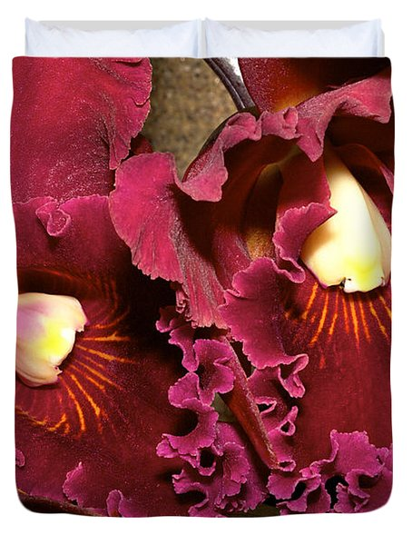 Rich Burgundy Orchids Duvet Cover