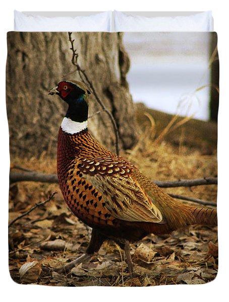 Ring-necked Pheasant Duvet Cover