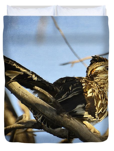 Roadrunner Up A Tree Duvet Cover