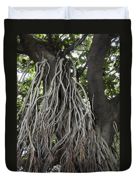 Roots From A Large Tree Inside Jallianwala Bagh Duvet Cover by Ashish Agarwal